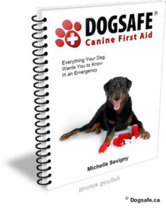 Dogsafe Canine First Aid course manual